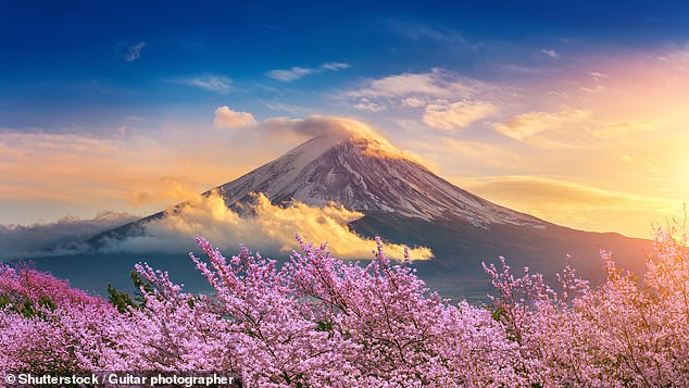 Take in the beautiful sights of Japan - such as Mount Fuji, pictured - on a 13-day tour of the country