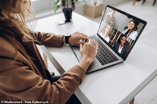 Vital time was lost in Britain because sensitive documents can only be read in Government offices for security reasons ¿ but as many as four out of five officials were working from home (stock image)