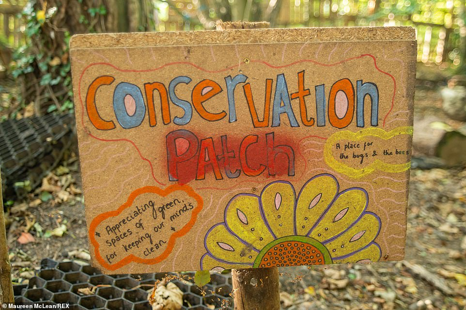 A conservation patch was also present, with its aim to encourage more insects and wildlife to thrive on the spot