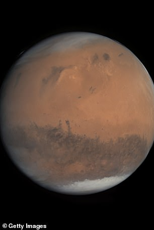 Elon Musk said he would like to build cars on the Red Planet