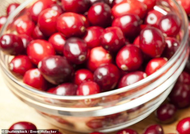 A pill made from cinnamon, cranberry (pictured) and 'healthy' bacteria is being tested as a way to prevent and treat cystitis.