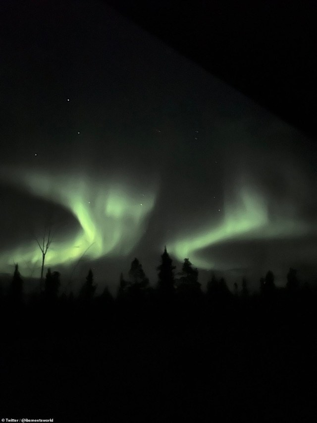 Normally, Aurora is only visible at high latitudes, around the Earth's magnetic poles, but yesterday's major solar storm extended their range.  Photo: Northern Horse above the tree line in White Horse, Yukon, northern Canada.