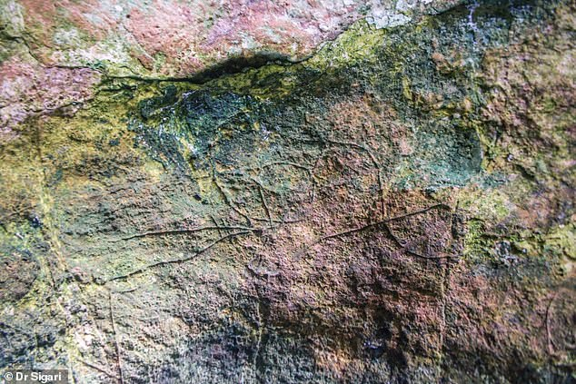 , Stunning Stone Age rock art including a depiction of a bird is discovered in Italy, The Today News USA