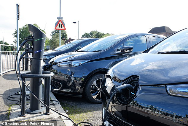 The Government has made it clear since 2018 that grants towards the purchase of electric cars won't last forever. The PiCG commitment is currently due to end in 2023
