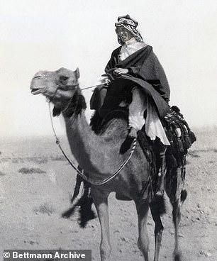 Lawrence of Arabia'