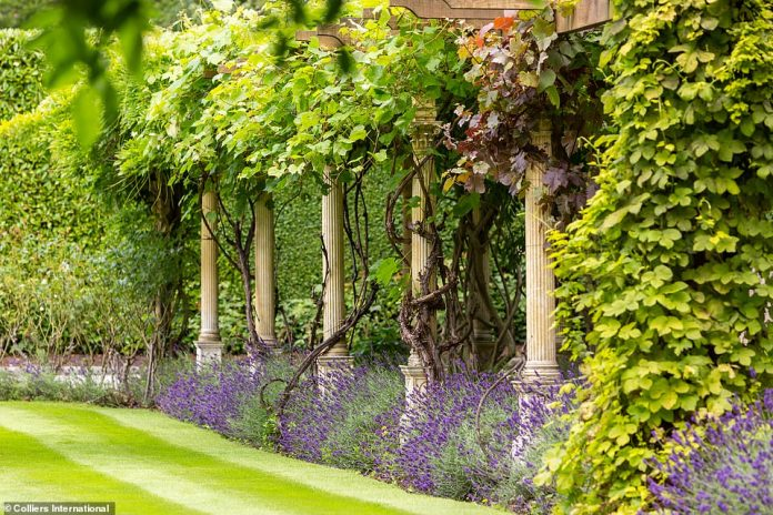 A lavender pergola walkway, embellished with climbing roses and wisteria, cuts through the property's lawn