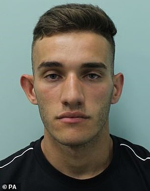 Court heard Ermir Loka was travelling at 15mph when he ploughed into the pensioner in London in broad daylight