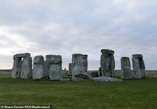 Wiltshire Police said the unnamed man, 30, from Bradford, West Yorkshire, was snared after he could not resist boasting about his 'finds and the location' of Stonehenge (pictured)