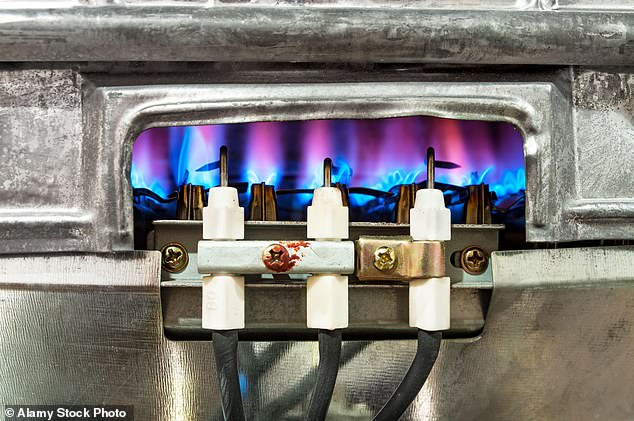 Boris Johnson is planning a ban on all new gas boilers by 2035 and more incentives to use green alternatives as he pushes to hit the government's net zero target