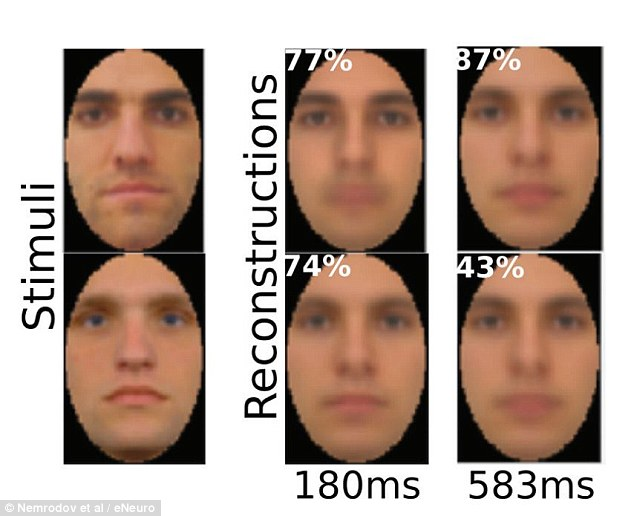 Researchers estimate that it takes our brain about 170 milliseconds (0.17 seconds) to form a good representation of a face we see. This image shows netural faces shown to volunteers and their recreations after 180 milliseconds (ms) and 583 ms