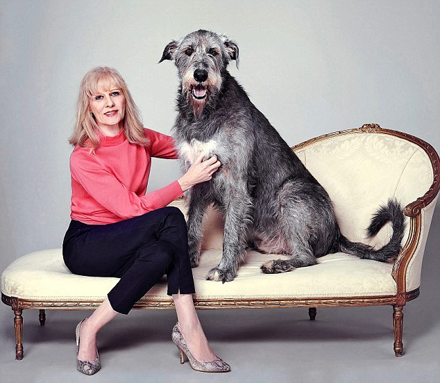 Owner Ann weighs 9st 4lb but lovable Seamus weighs 12st 6lb. She said:'Seamus is a bit of a celebrity and has appeared in The Crown and worked for the photographer Nick Knight OBE in a Halloween film'