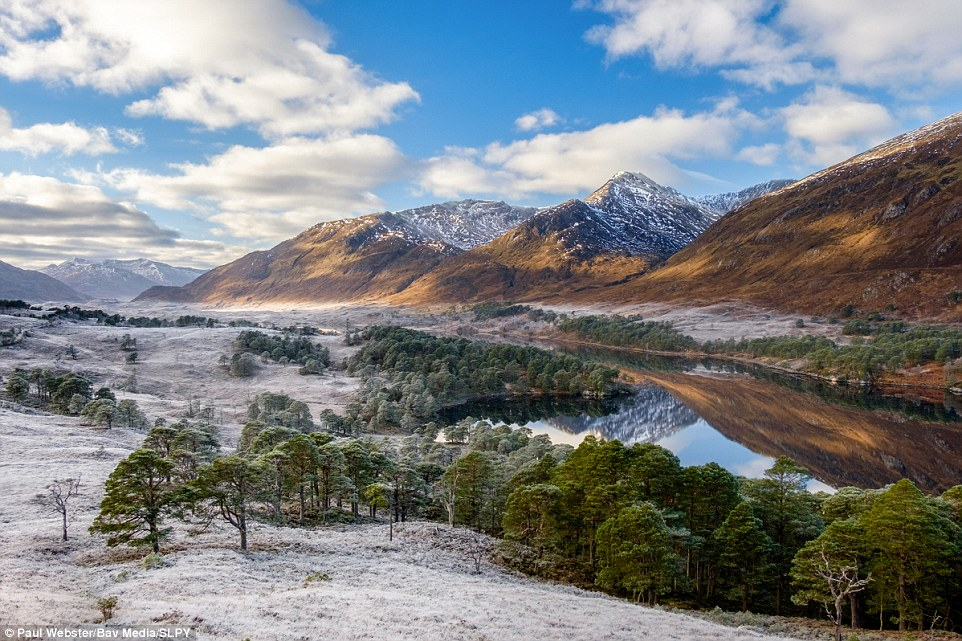 Wild Affric: Another winning entry by Paul Webster. The native Caledonian pinewoods have helped Affric secure its reputation as Scotland's most beautiful glen. Here the An Tudar ridge rises above the still waters of Loch Affric on a cold day in winter