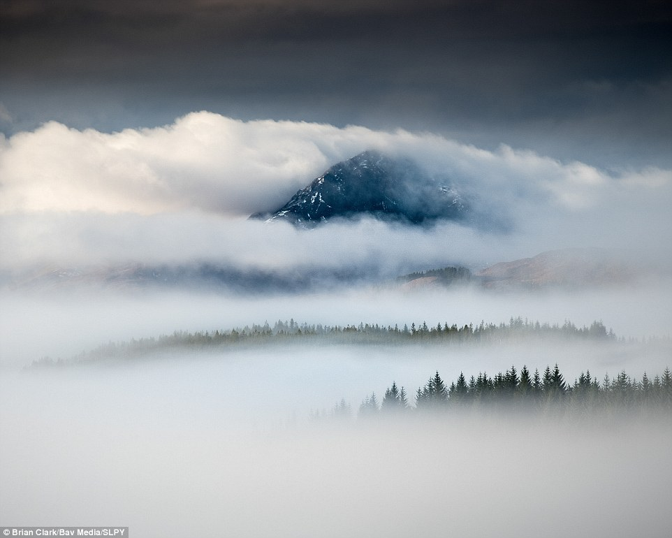Scaling new heights: This eye-popping capture by Brian Clark  shows morning mist on Lochaber Near Inchlaggan. The trees piercing the fog provides an enhanced sense of perspective and scale for the viewer