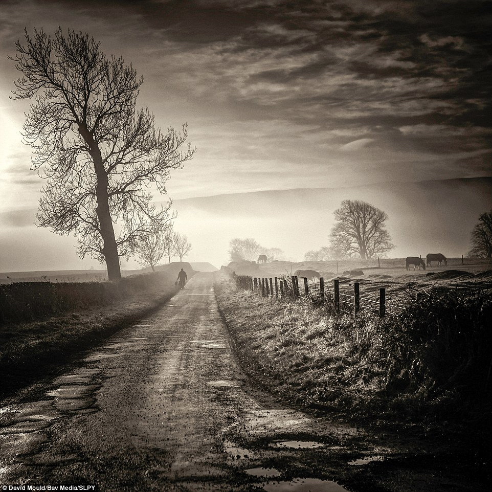 A moment in time: Packed with an instant sense of nostalgia, this simple image by David Mould shows Ballinton, Thornhill, in Stirlingshire, during daybreak. A dog-walker is seen navigating one of the country roads, while cows graze in a nearby field