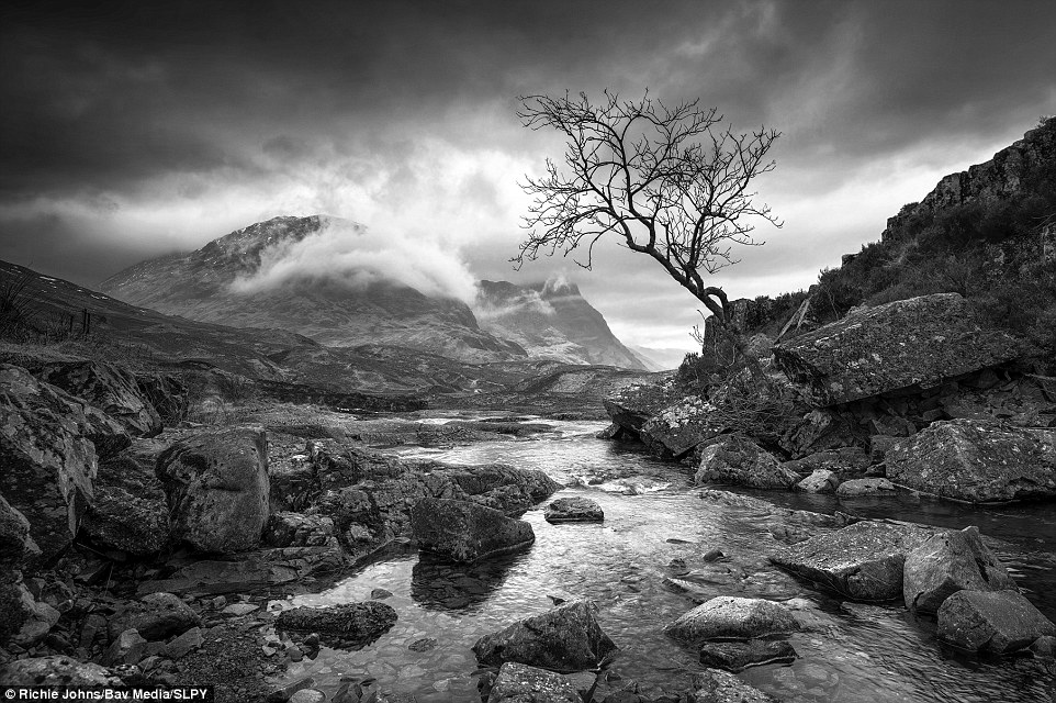 Moody: This dramatic black-and-white image by Richie Johns  shows an early morning in Glencoe in all its natural glory. The naked tree stretching out into the centre of the image adds an eerie element to this sweeping landscape shot