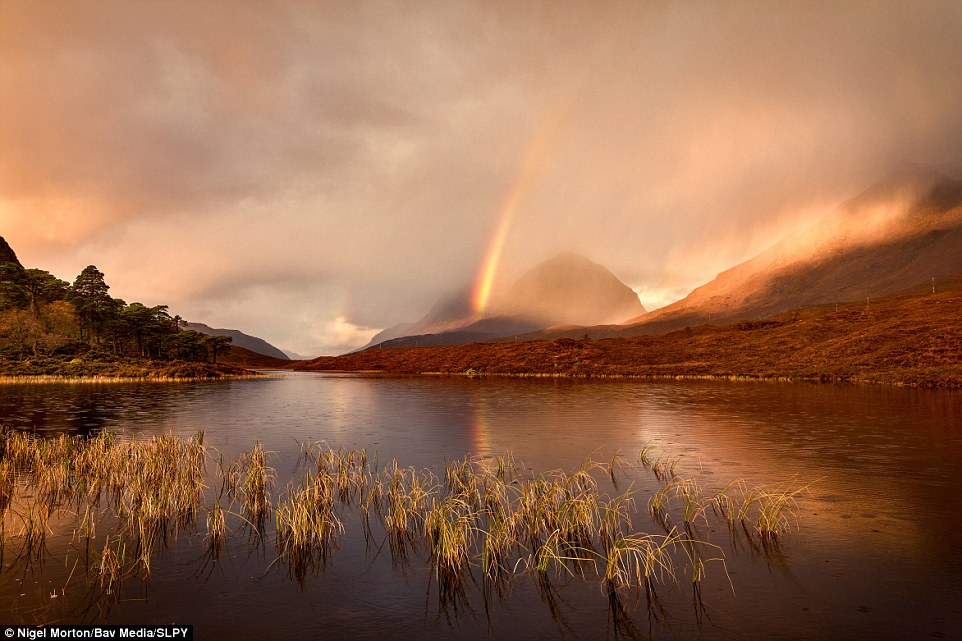 Winner: Nigel Morton won the weather category with his striking image of a rainbow soaring by Loch Clair, Glen Torridon. Reflected in the water and yet obscured by clouds, it's a remarkable snapshot of nature's implicit complexity