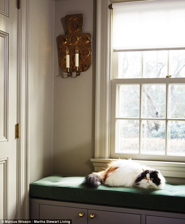 Inside Martha Stewarts Insanely Organized Closet Daily