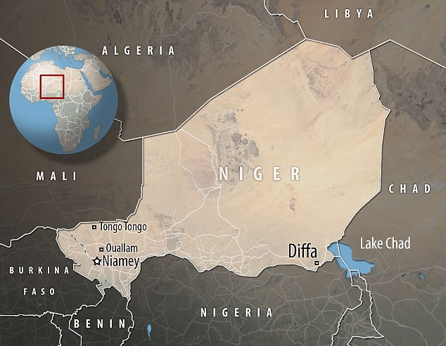 The U.S. military revealed on Wednesday that Green Berets were involved in a firefight with Islamic State forces near Diffa in Niger in December