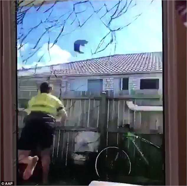 Samuel Conroy was filmed wearing high visibility work gear as he picked up the cat and launched it into the air, well above roof height