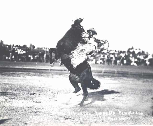 Pictured riding again in 1916, Jess Stahl was a legend in the old West. Nothing is known about his childhood other than he had a brother named Ambrose. Both brothers joined the rodeo circuit but only Jesse went on to fame. He would thrill fans at shows and earned a reputation as a magnificent rider