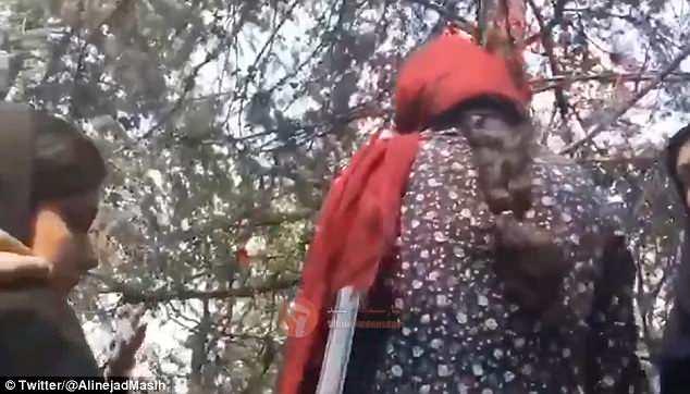Muestra a una mujer joven con una larga bufanda roja que se cubre holgadamente la cabeza, mostrando claramente el pelo, rodeada por tres policías de moralidad con chador, que la agarran