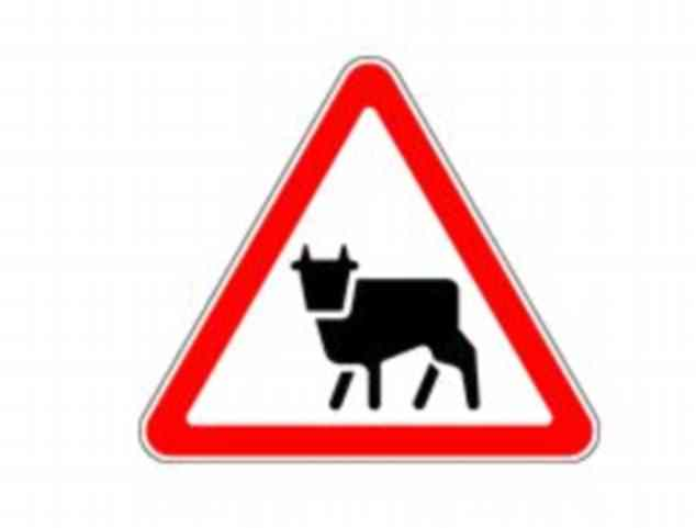 Another of the Russian road signs. This one may seem fairly obvious, but is it?
