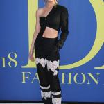 Rosie Huntington-Whiteley stuns at the CFDA Fashion Awards in New York