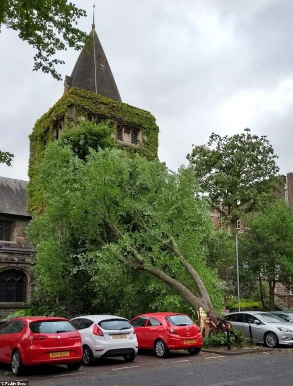 A tree has fallen over next to All Souls Presbyterian Church in Belfast as Northern Ireland is hit by high winds today