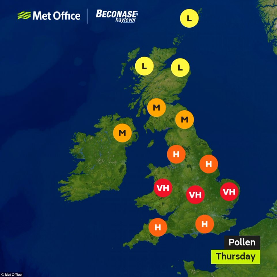 The pollen count remains very high for central England and Wales today, and high for most other parts of England
