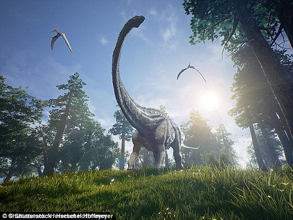 Sauropods were the first successful group of herbivorous dinosaurs, dominating most terrestrial ecosystems for more than 140 million years, from the Late Triassic to Late Cretaceous
