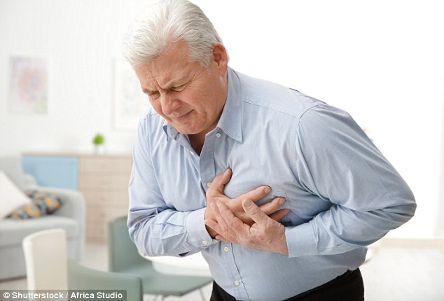 Irregular heart beats, or atrial fibrillation, affects up to one in four adults (stock)