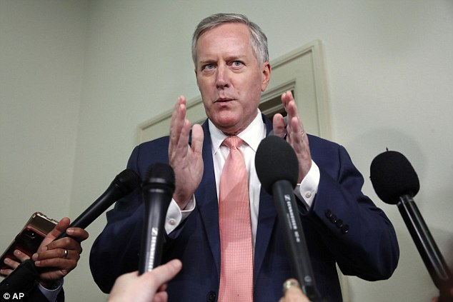 Republican Rep Mark Meadows said he found Page to be a 'very credible witness' and said she provided new information