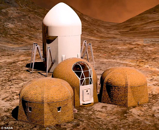 Nasa competition finalists have revealed their incredible 3D-printed habitats that could be used to colonise the red planet. Pictured is the entry fromTeam Zopherus of Rogers, Arkansas. They received $20,957.95