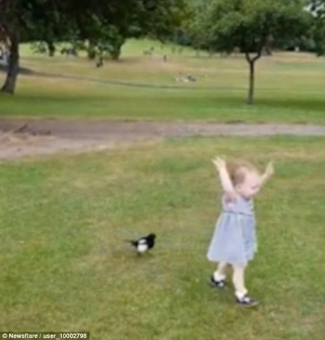 Videos von Mädchen quietschen
