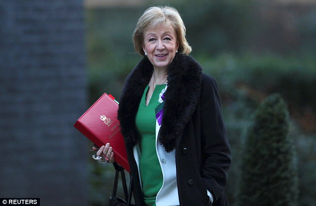 Andrea Leadsom (pictured) said proxy voting would be a 'significant change' as it would allow MPs to vote without being present in Parliament
