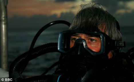 Mike deGruy surfaces after a night dive