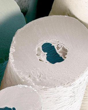 Polar Bear Hair Or Loo Roll Shark Skin Or Cheese Grater