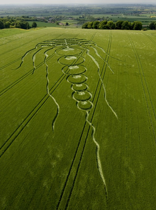 Jellyfish crop circle in Kingstone Coombes, Oxfordshire