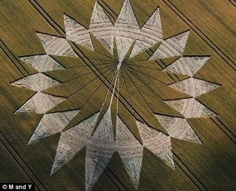 Main attraction: The crop circle near Cannings Cross Farm, in Wiltshire. A group of Norwegian tourists were visiting the site when a camouflaged farm worker began firing a shotgun over their heads