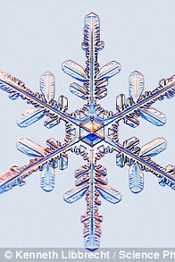 Snowflakes The Coolest Shapes On The Planet Are Even More