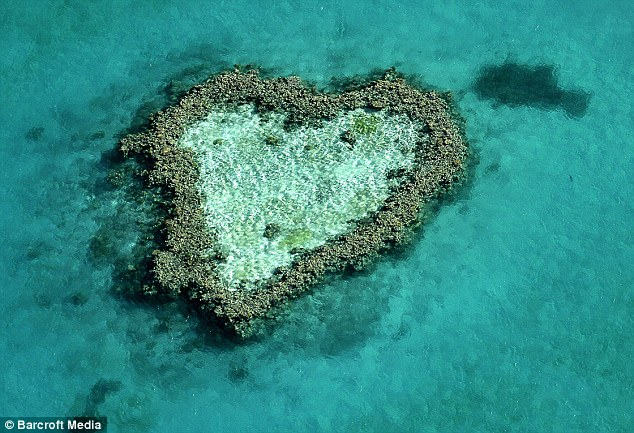 A heart-shaped coral reef in Australia