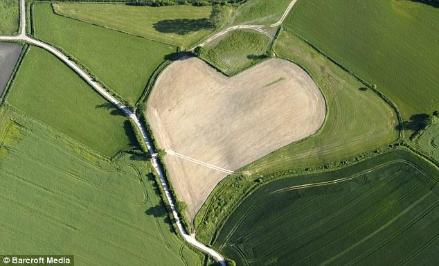 Heart-shaped meadow in Trittau, Germany