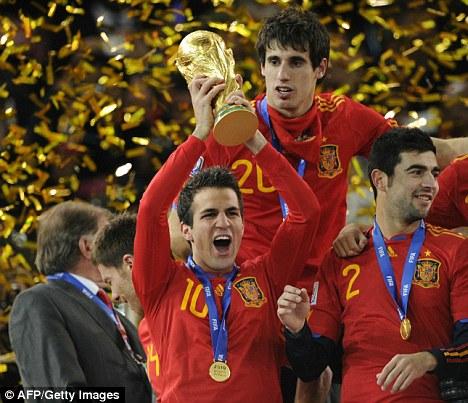 Cesc Fabregas WC 2010 Final