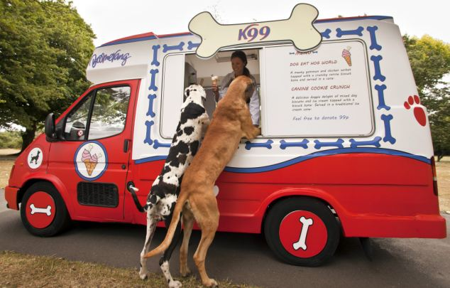 2 dogs with their paws on the window of a dog-oriented ice cream truck