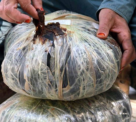 Big score: Afghanistan produces 90 per cent of the world's opium, which, in turn, produces heroin