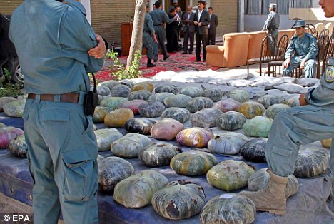 Stash: Though some opium is seized, these latest figures offer are not expected to deter other farmers from cultivating
