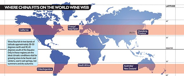 China could become a wine superpower to rival old established giants of France, Italy and Spain