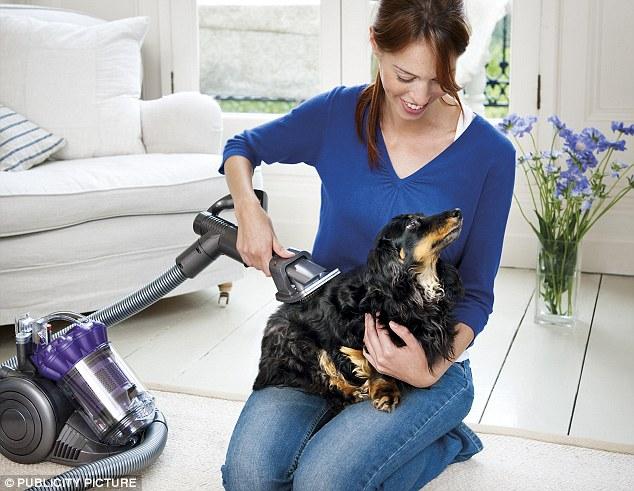 Best Vacuum Pet Hair