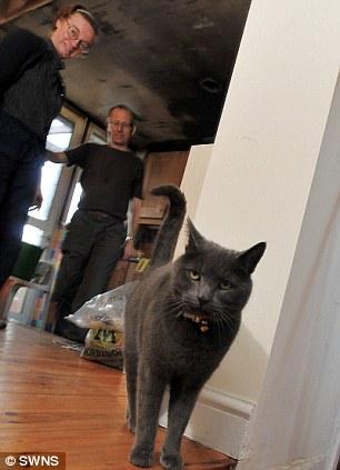 Si kucing pintar, Pepper, dan majikannya.
