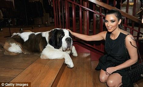 Kim Kardashians Christmas Heartbreak Death Of Puppy When